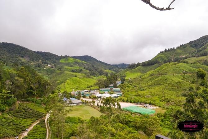 Traveling Malaysia - Cameron Highlands Boh Tea Farm4